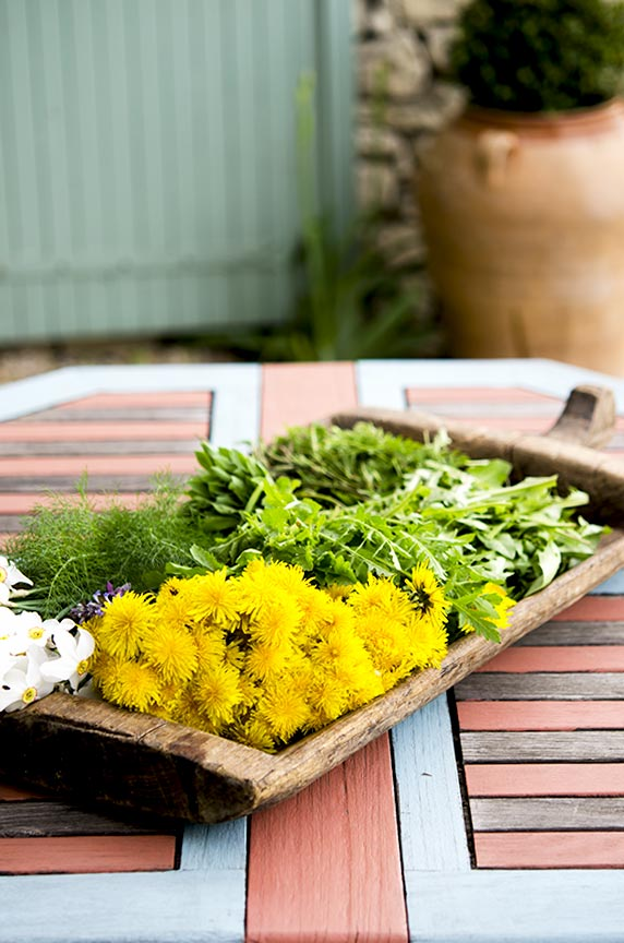 With food foraging, dandelions, fennel and other leafy greens can be found easily.