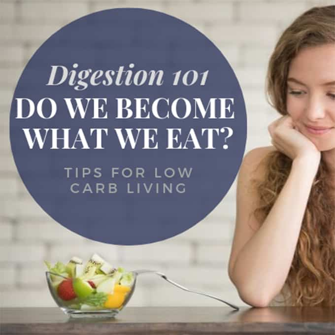 Low Carb Digestion Article