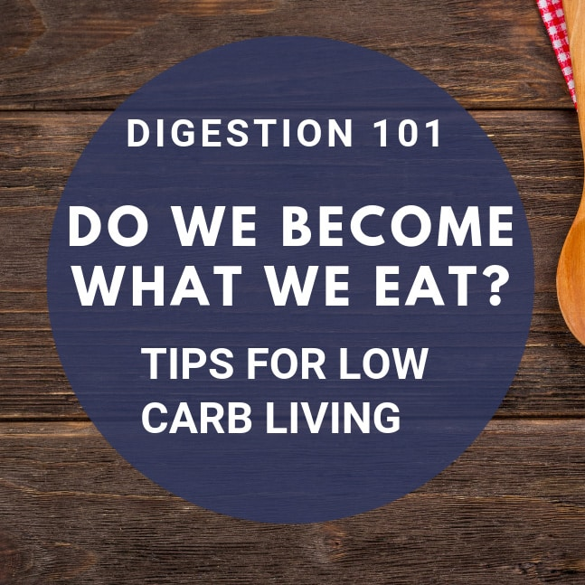 low carb digestion